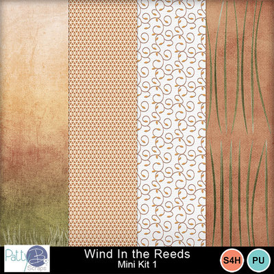 Pbs_wind_in_the_reeds_mk1ppr_prev