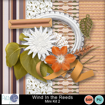 Pbs_wind_in_the_reeds_mk2all_prev