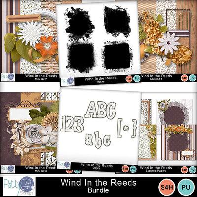 Pbs_wind_in_the_reeds_bundle_prev