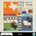 Texas_qp_small