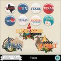 Texas_wa_and_flair_small