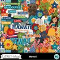 Hawaii_word_combo_small