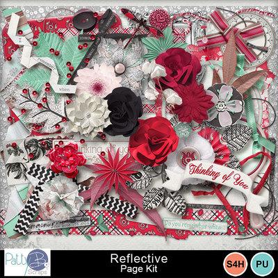 Pbs_reflective_pkele_prev
