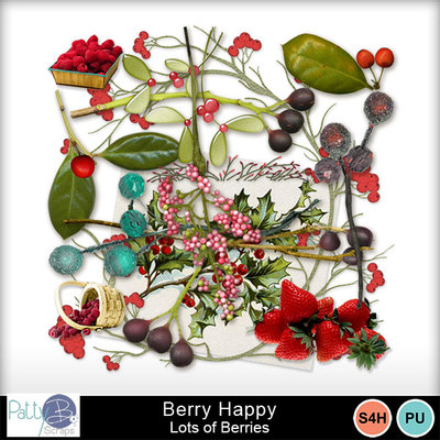 Pbs_berryhappy_lob_prev