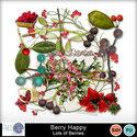 Pbs_berryhappy_lob_prev_small