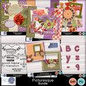 Pbs_picturesque_b_prev_small