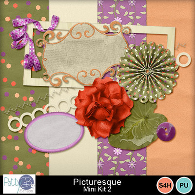 Pbs_picturesque_mk2all_prev