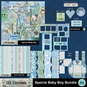 Special_baby_boy_bundle-01_small