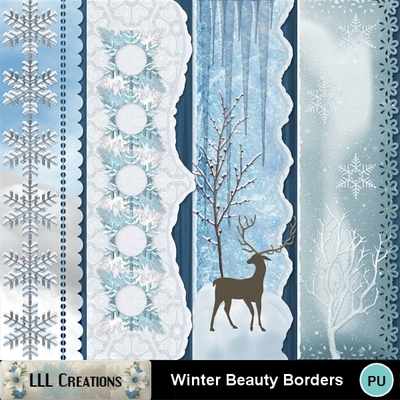 Winter_beauty_borders-01