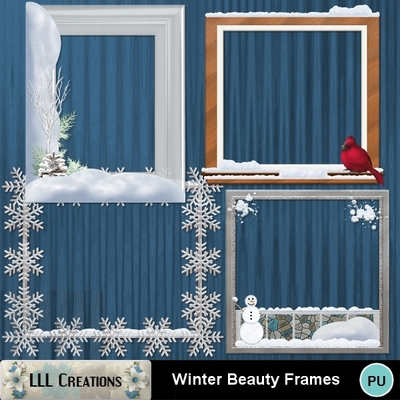 Winter_beauty_frames-01