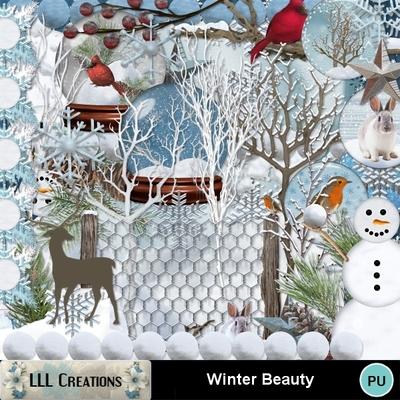 Winter_beauty-01
