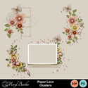 Paperlace_clusters_small