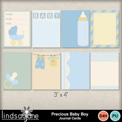 Preciousbabyboy_journalcards_01