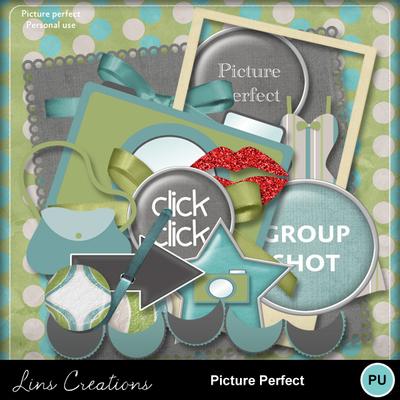 Pictureperfect7
