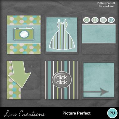Pictureperfect5