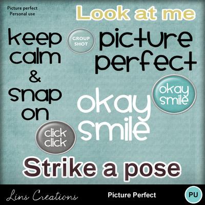 Pictureperfect4