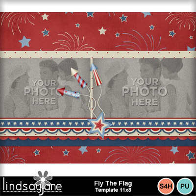 Fly_the_flag_11x8-001