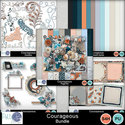 Pbs_courageous_bundle_small