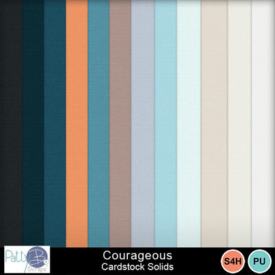 Pbs_courageous_cs