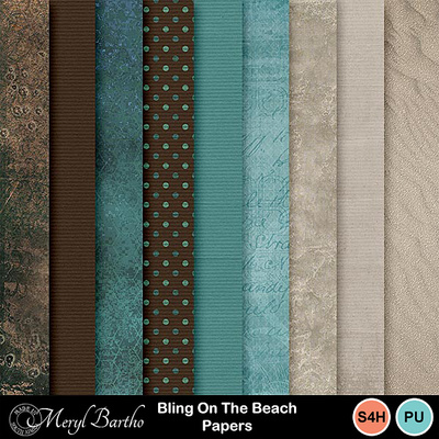Blingonthebeach-papers