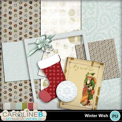 Winter-wish_1