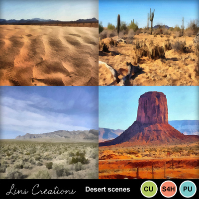 Desertscenes