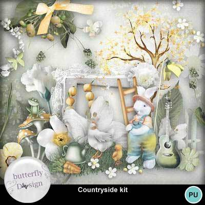Butterflydsign_countryside_pv_memo
