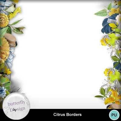 Butterflydsign_citrus_pv_memo_bord