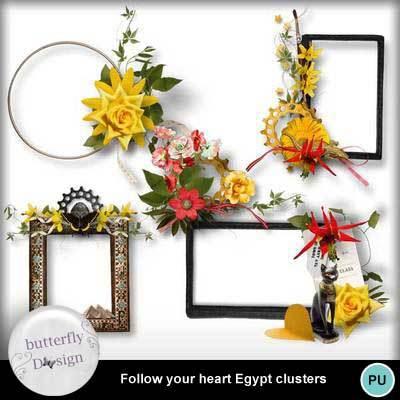 Butterfly_followyourheart_egypt_pv_clust_memo