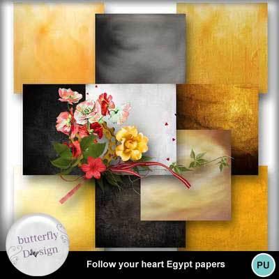Butterfly_followyourheart_egypt_pv_pap_memo