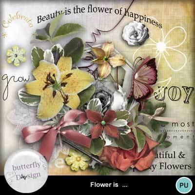 Butterflydsign_floweris_pv