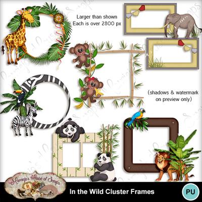 Cluster_frames_preview