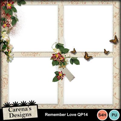 Remember-love-qp14