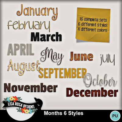 Lisarosadesigns_months6styles