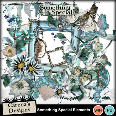 Something-special_elements