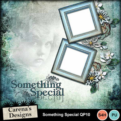 Something-special-qp10