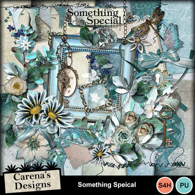 Something-special_01