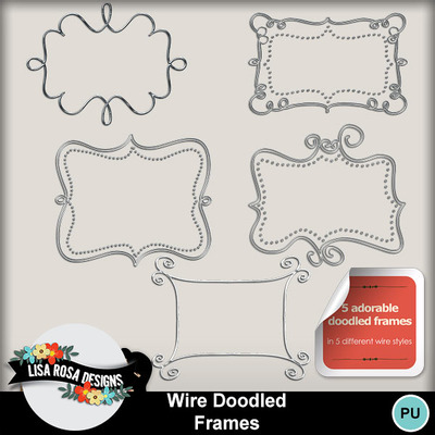 Lisarosadesigns_wiredoodledframes1