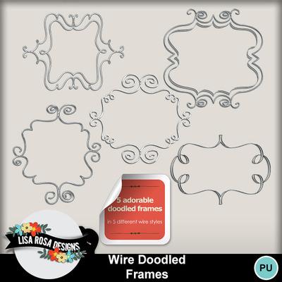Lisarosadesigns_wiredoodledframes2