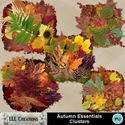 Autumn_essentials_clusters-01_small