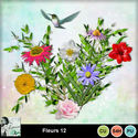 Louisel_cu_fleurs12_preview_small