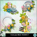 Louisel_i_love_you_mom_clusters1_preview_small