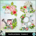 Louisel_souffle_printanier_clusters2_preview_small