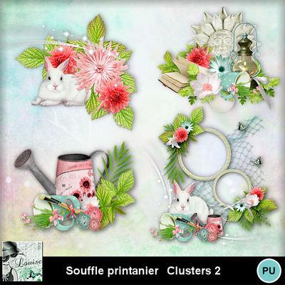 Louisel_souffle_printanier_clusters2_preview