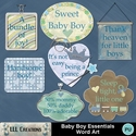 Baby_boy_essentials_word_art-01_small