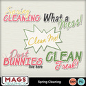Mgx_mm_springclean_wa_small