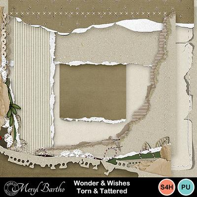 Wonder_wishes-torn