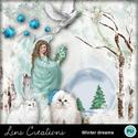 Winter_dreams_small