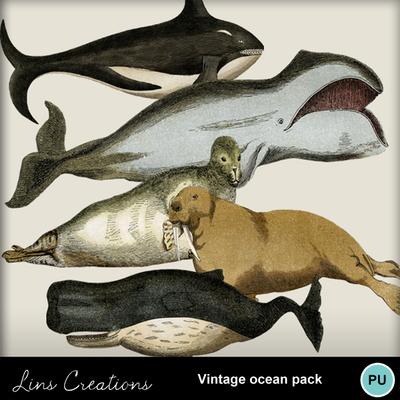 Vintage_ocean