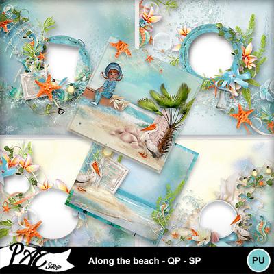 Patsscrap_along_the_beach_pv_qp_sp